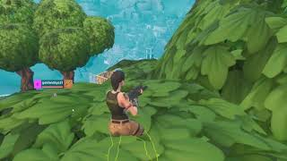 Fortnite your anti-cheat works too well Wow (dsl for quality)