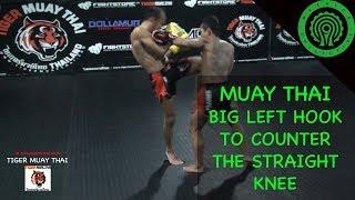 Muay Thai Big Left Hook to Counter the Straight Knee Tutorial