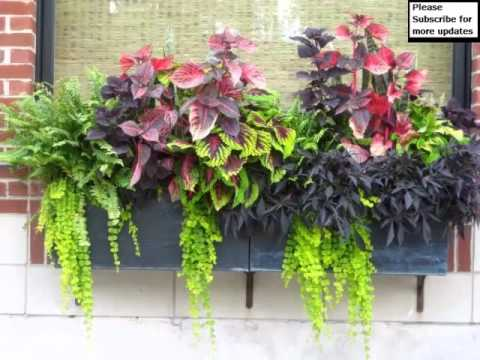 Flower Pot Arrangement Ideas Pictures Of Car Decor
