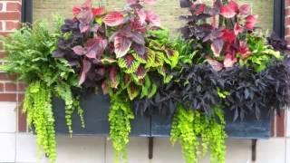 Flower Pot Arrangement Ideas | Pictures Of Car Decor