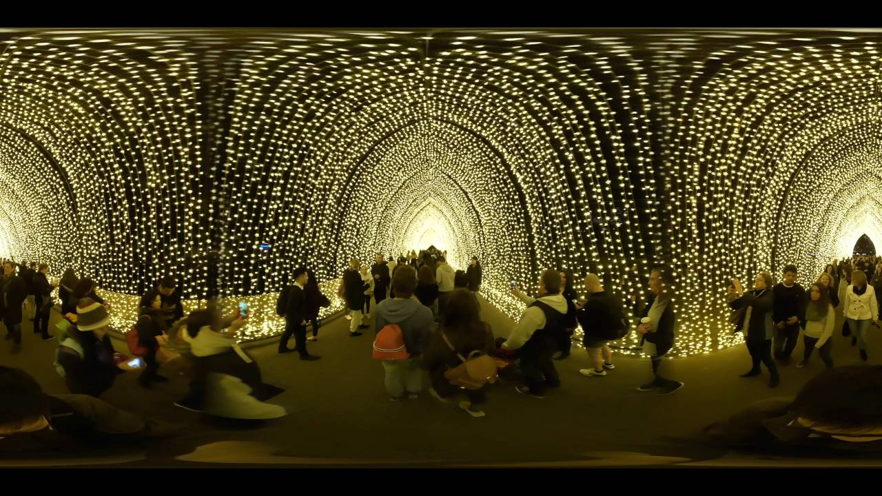 Sydney 360 Video Cathedral Of Light At Royale Botanic Garden