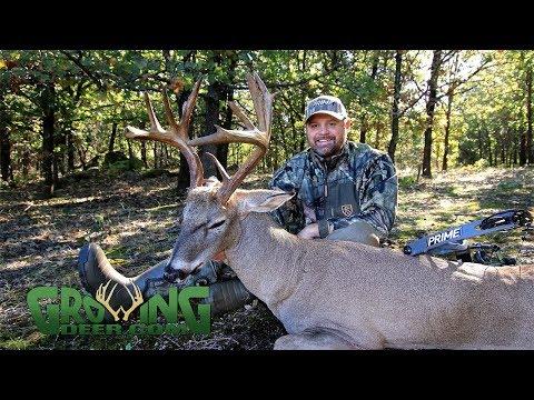 October Deer Hunting: Three Bucks Down! (#466) @GrowingDeer.tv