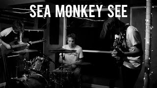 SEA MONKEY SEE // SPIRIT VISION SESSION