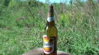 weihrauch HW50S e diabolo jsb exact a 25 mt contro Bottiglia birra 66 cl.