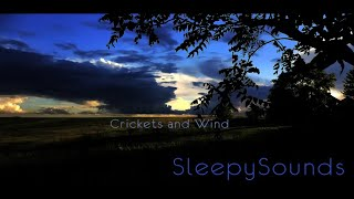 Crickets and Wind – 9 hours of relaxing sounds to help you fall asleep - White noise