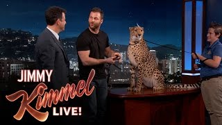 Download Wild Animals with Dave Salmoni Mp3 and Videos