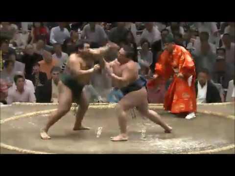 突っ張り Tsuppari 相撲 SUMO