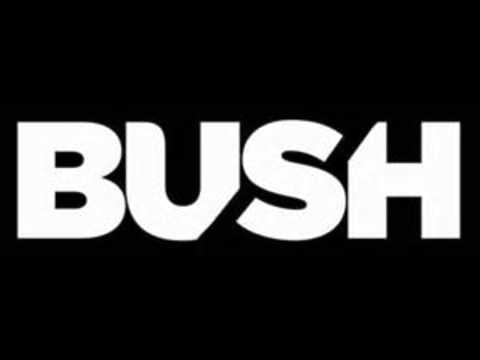 Bush - Swallowed W/Lyrics (HD)