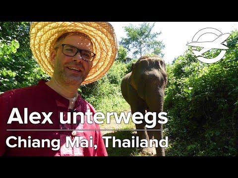 Chiang Mai in Thailand ✈️ Alex Unterwegs ✈️