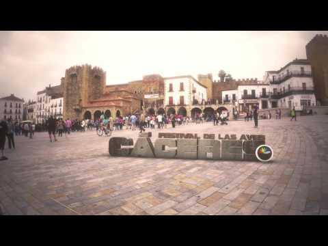 Festival de Las Aves Ciudad de Cáceres