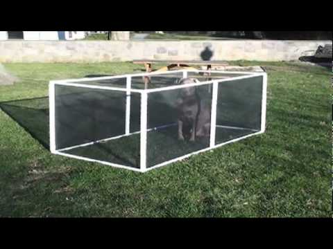 Extend A Pen The Amazing Pet Fence As Seen On Tv Youtube