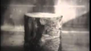 Физика Электричество Молния 1967 г