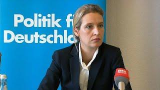 AfD kaufte Facebook-Likes mit der Schweiz-Spende