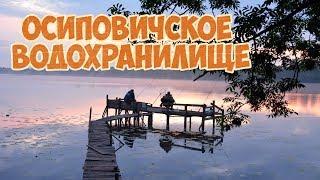 Осиповичское водохранилище Ловля на фидер Рыбалка в Беларуси