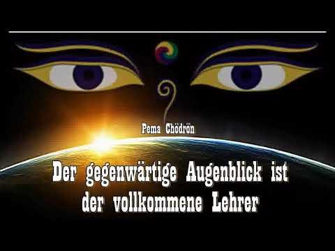 Der gegenwärtige Augenblick ist der vollkommene Lehrer - Pema Chödrön ( Buddhismus )