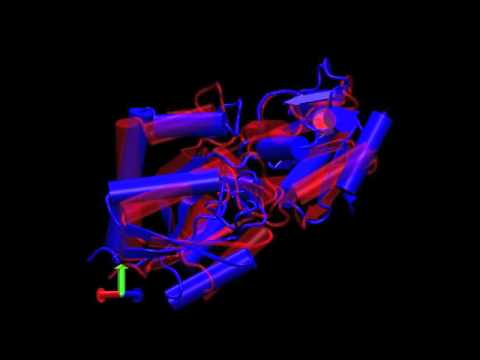 Reveal Dynamics of LAO protein by refinement