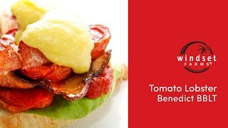 Windset Farms: Lobster Benedict Bblt