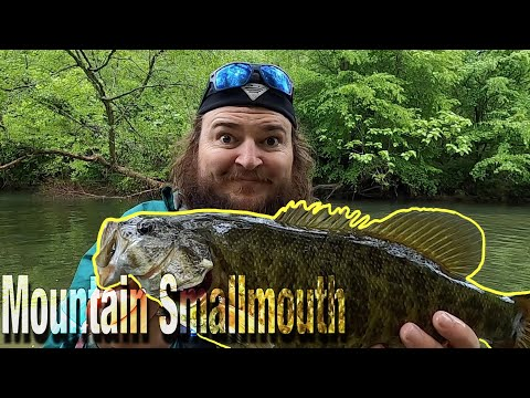 East Tennessee Smallmouth Fishing