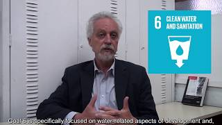 United Nations Special Rapporteur, Léo Heller - Human right to water