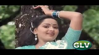 Kai Veesum Thamarai Kalyana Devathai Song | Prabhu,Radha | S.P.B,S.Janaki,Ilayaraja | Kairasikkaran