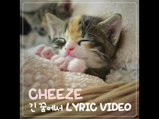 Lyric Video(리릭 비디오): CHEEZE(치즈) _ In a Long Dream(긴 꿈에서)