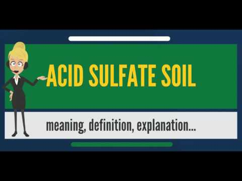 What is ACID SULFATE SOIL? What does ACID SULFATE SOIL mean? ACID SULFATE SOIL meaning