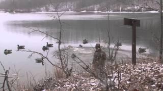 Indiana BIG water honker hunt with Stumblin