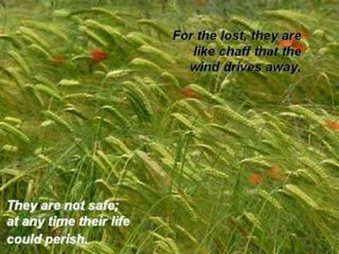 Psalm 1 - Kim Hill