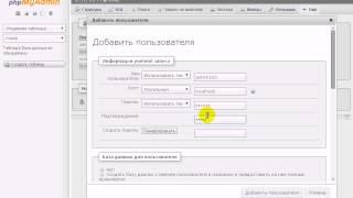 мультисайт Wordpress: как установить, настроить, локальный сервер