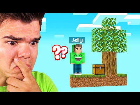 MINECRAFT SKYBLOCK But It's 2D! (Impossible)