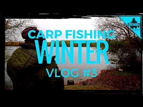 CARP FISHING IN WINTER - THE PARK LAKE VLOG #3 😀