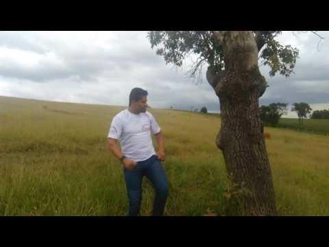 Angustiado - Fabio Silva