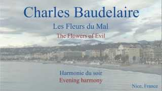 French Poem - Harmonie du Soir by Charles Baudelaire - Slow Reading