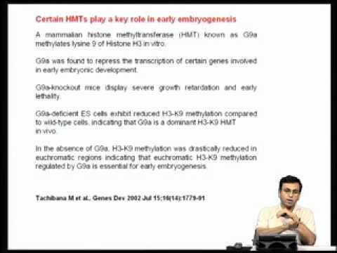 Mod-03 Lec-08 Role of histones in eukaryotic gene regulation