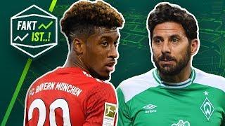 Fakt ist..! Augsburg ärgert Bayern! Pizarro mit Rekord! Bundesliga Rückblick 22. Spieltag 2018/19
