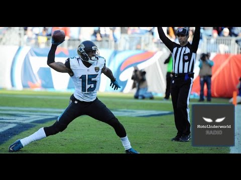 What really happened to Jaguars WR Allen Robinson in 2016?