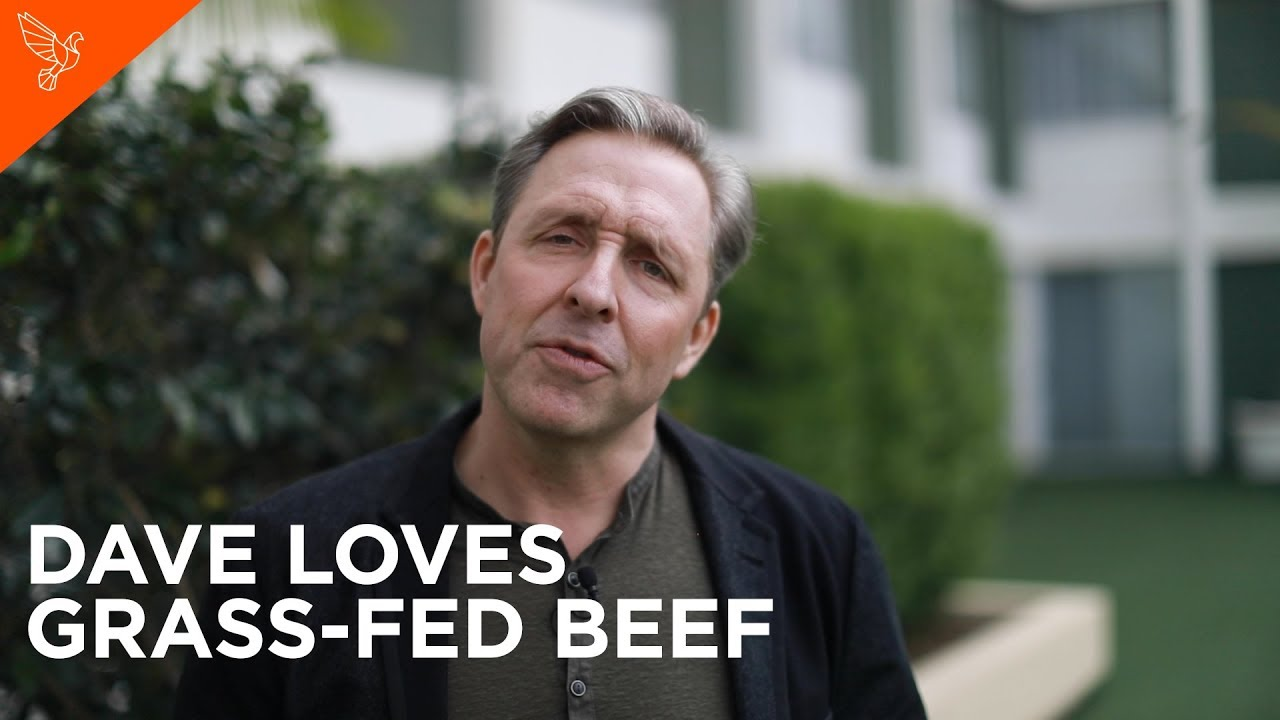 Why You Should Be Eating Grass-Fed Beef Now