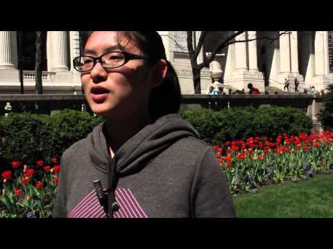 New York Finance Internships - Dream Careers