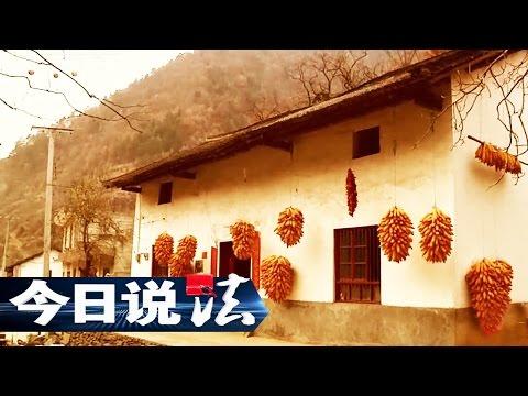 《今日说法》 20170410 秦岭作证(上) | CCTV