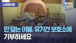 [스마트리빙] 안 덮는 이불, 유기견 보호소에 기부하세요 (2020.10.30/뉴스투데이/MBC)