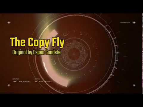 The Copy Fly