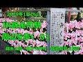 【JR錦糸町駅周辺を歩く01】 の動画、YouTube動画。