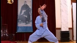 袁康就博士《養生修談》之宇陽太極拳 2004 Yu Yeung Taichi by Dr. HC Yuen