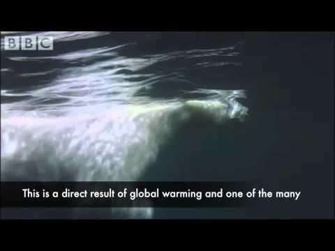 Kyoto Protocol and global warming