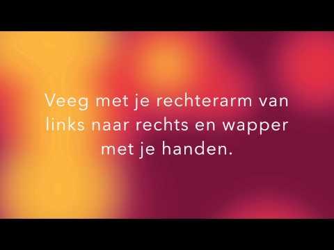 Leer De WAKABAMBA Dans Van BlitZ! (instructiefilmpje)
