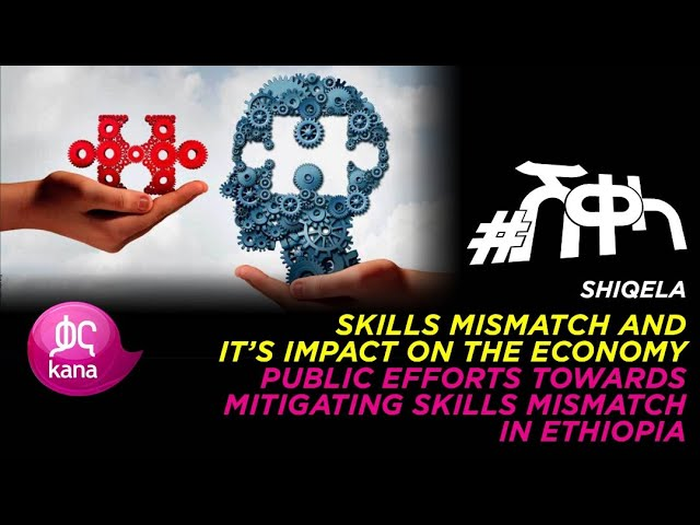 Impact of Skills Mismatch on the Economy |Sheqela