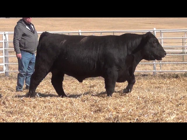 Express Ranches Lot 391