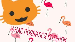 У нас появился котёнок!!!😺 Пишите в коментариях как назвать котёнка! |Vlada and Rustam |