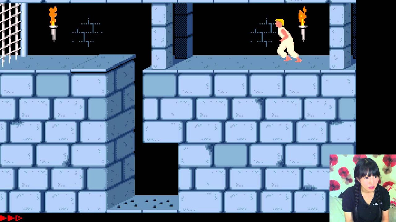 Prince of persia 2: the shadow and the flame windows, dos game.