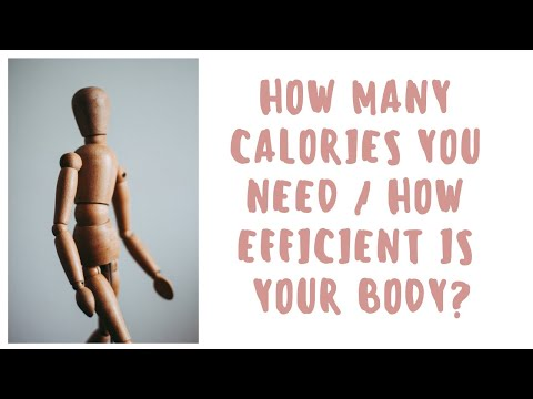 how many calories you need - how efficient is your body?